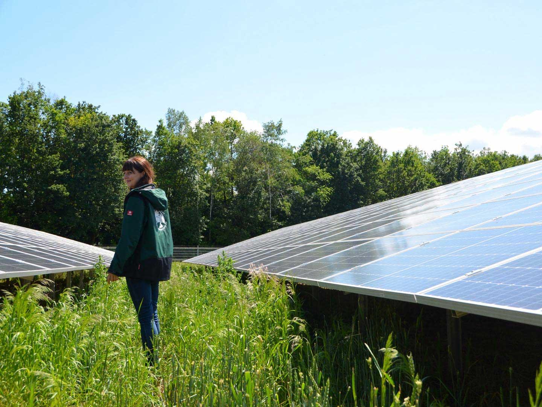NaturEnergy Repowering